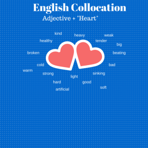 English Collocation (1)