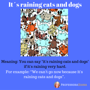 its-raining-cats-and-dogs-1